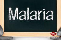 benguela-malaria