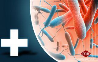 cólera-bactéria