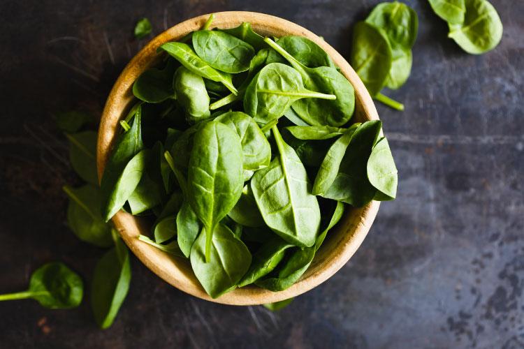 MS-Blog-11-Nutrição-Vegetais